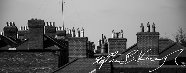 Chimneys of the houses around Rathmines. 12th March 2014