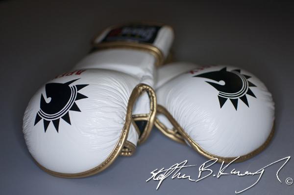 Spartaten's Apex MMA gloves. Leinster Road, Rathmines, Dublin. 20th August 2013